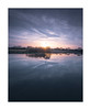 Swanlight by David Haughton