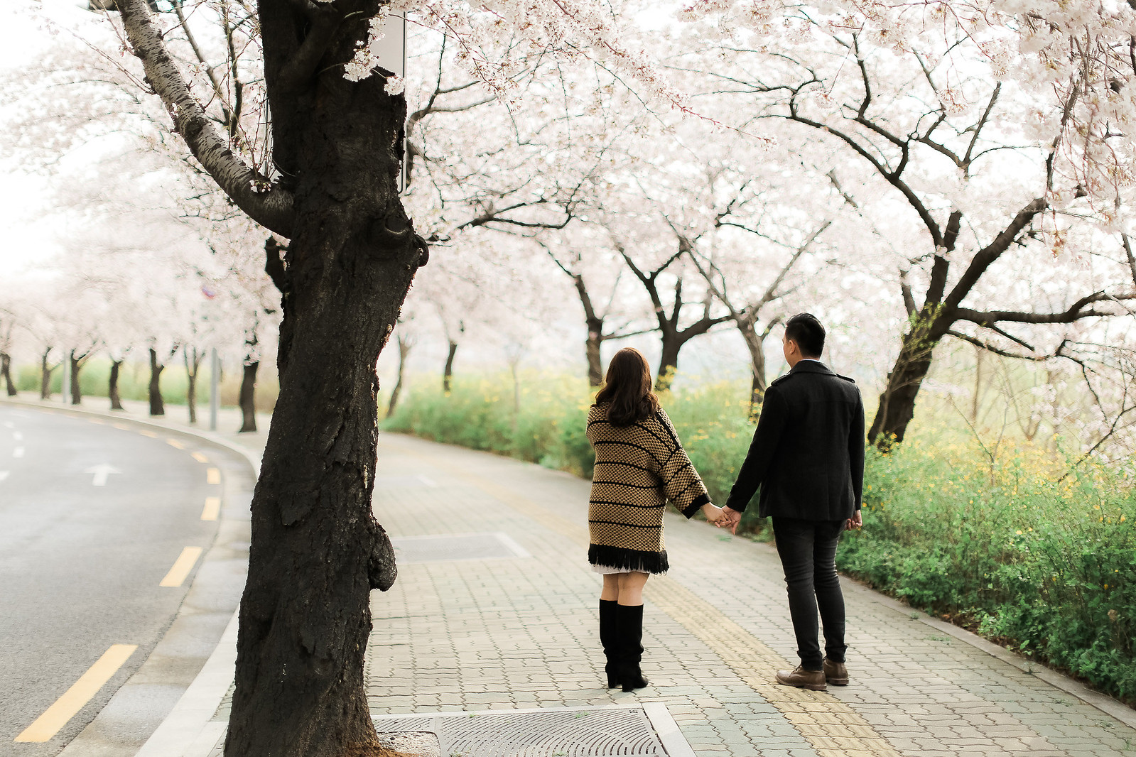 SOUTH KOREA PRENUP_ (43)