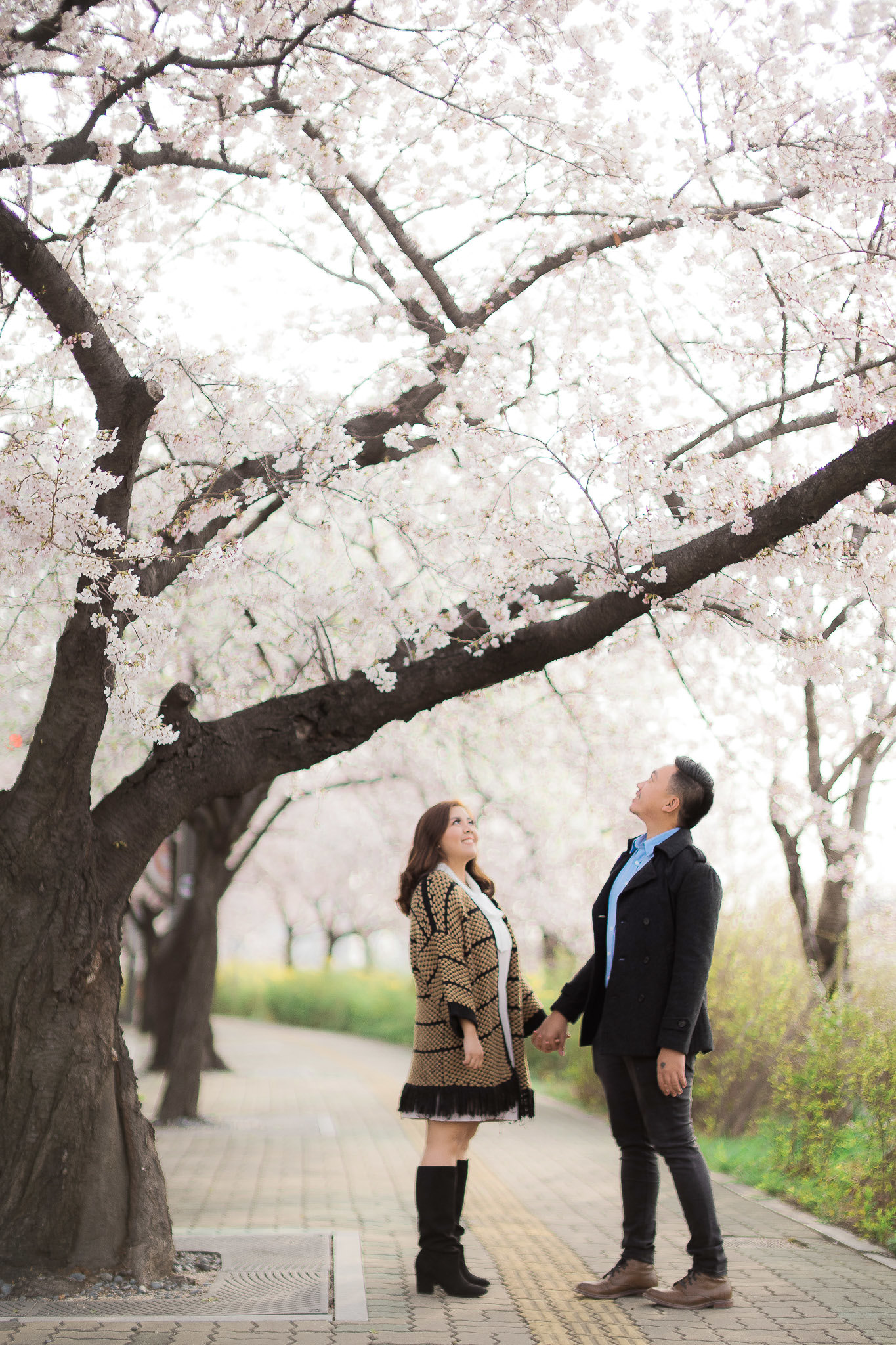 SOUTH KOREA PRENUP_ (17)