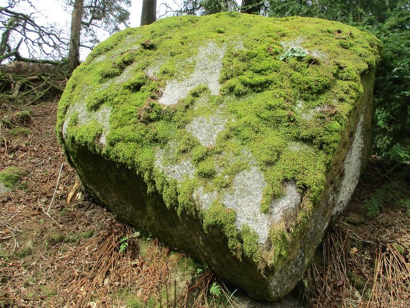 Brimpts Rocks Northern Wood Upper Rock SX 6725 7468