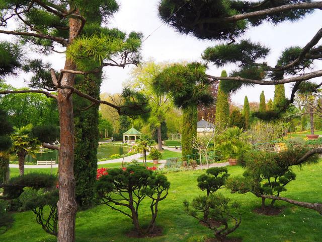 El jardin.