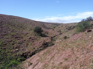 Lone Walker in Upper Cwm Cleisfer SWC Walk 332 Llangynidr to Bwlch or Circular