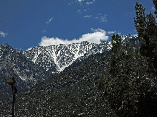 Snow on Mt San Jacinto (5073)