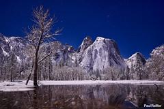 Yosemite Nights