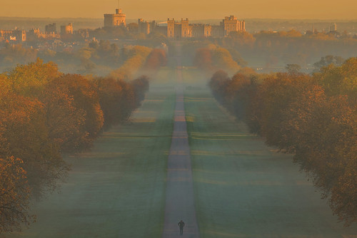 windsor uk berkshire sunrise autumn fog andreapucci longwalk greatpark