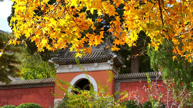 Mùa thu Trung Quốc | du lịch Trung Quốc
