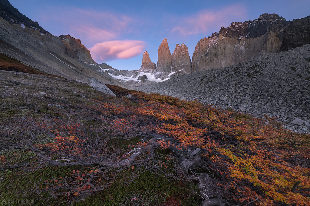 Colorful morning - Torres del Paine