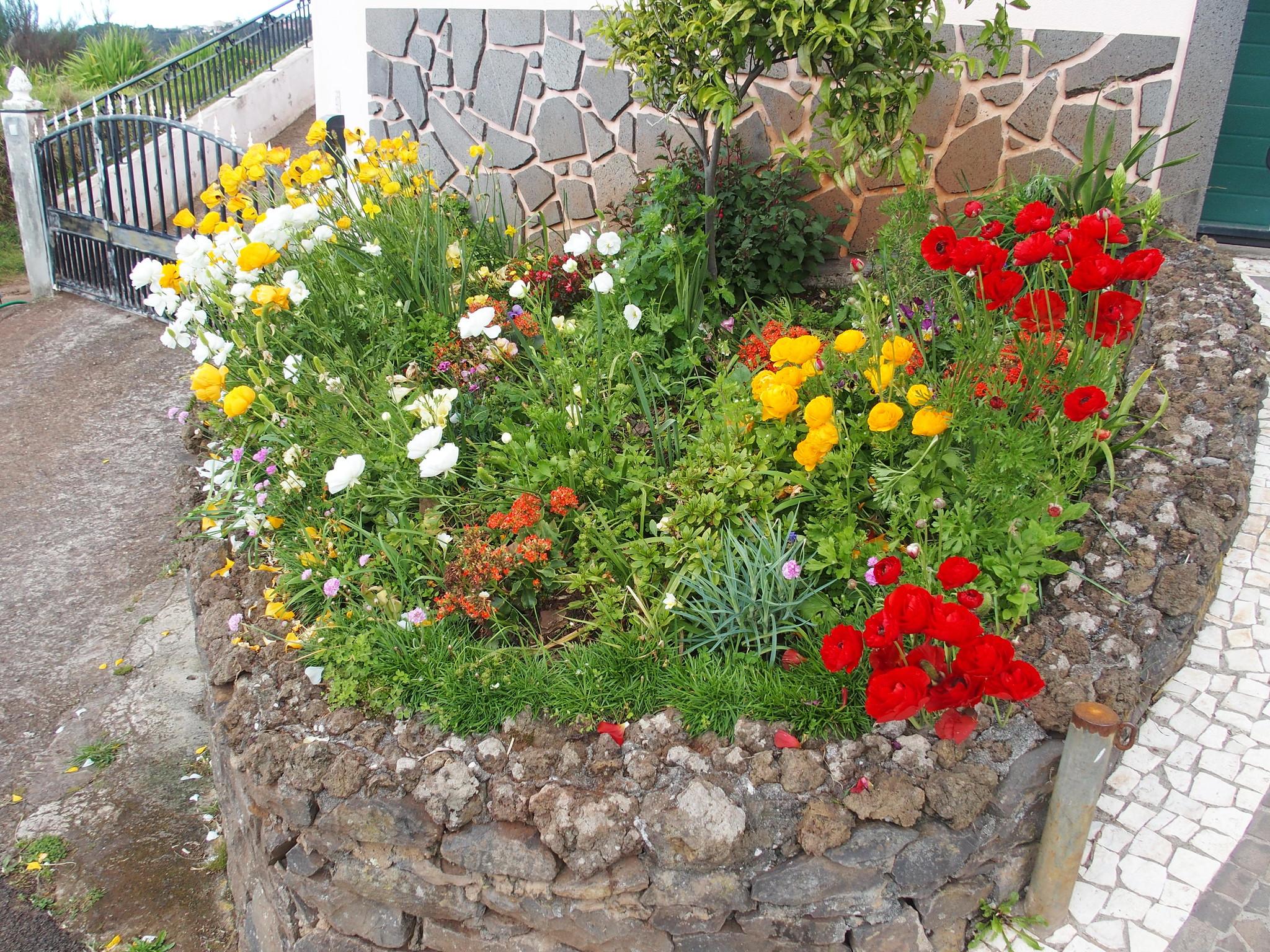 Lokal trädgård