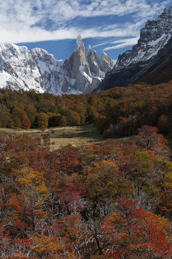Cerrio Torre and colorful trees - El Chalten