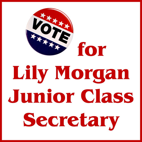 lily_voteposter   by Amy Mickey