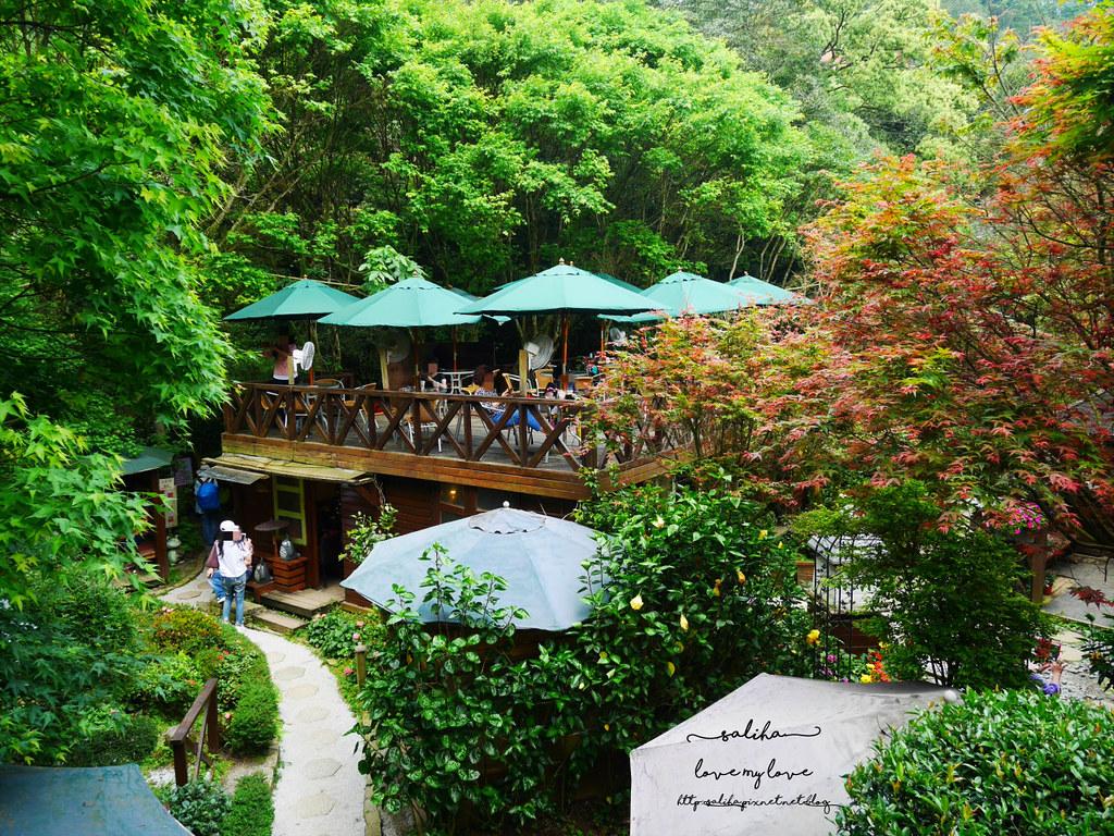 陽明山一日遊ig打卡景點推薦台北奧萬大楓葉季景觀餐廳親子戲水 (7)