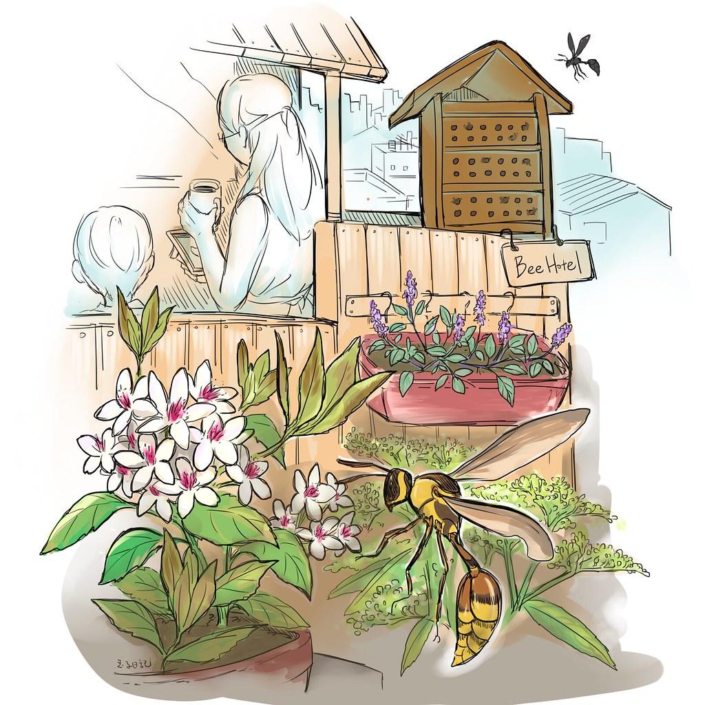 城市養蜂(插畫)