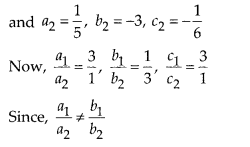 NCERT Exemplar Class 10 Maths Chapter 3 Pair of Linear Equations in Two Variables 3.3 Q3b
