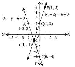 NCERT Exemplar Class 10 Maths Chapter 3 Pair of Linear Equations in Two Variables 3.3 A11b