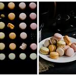 macaron- commercial & editorial