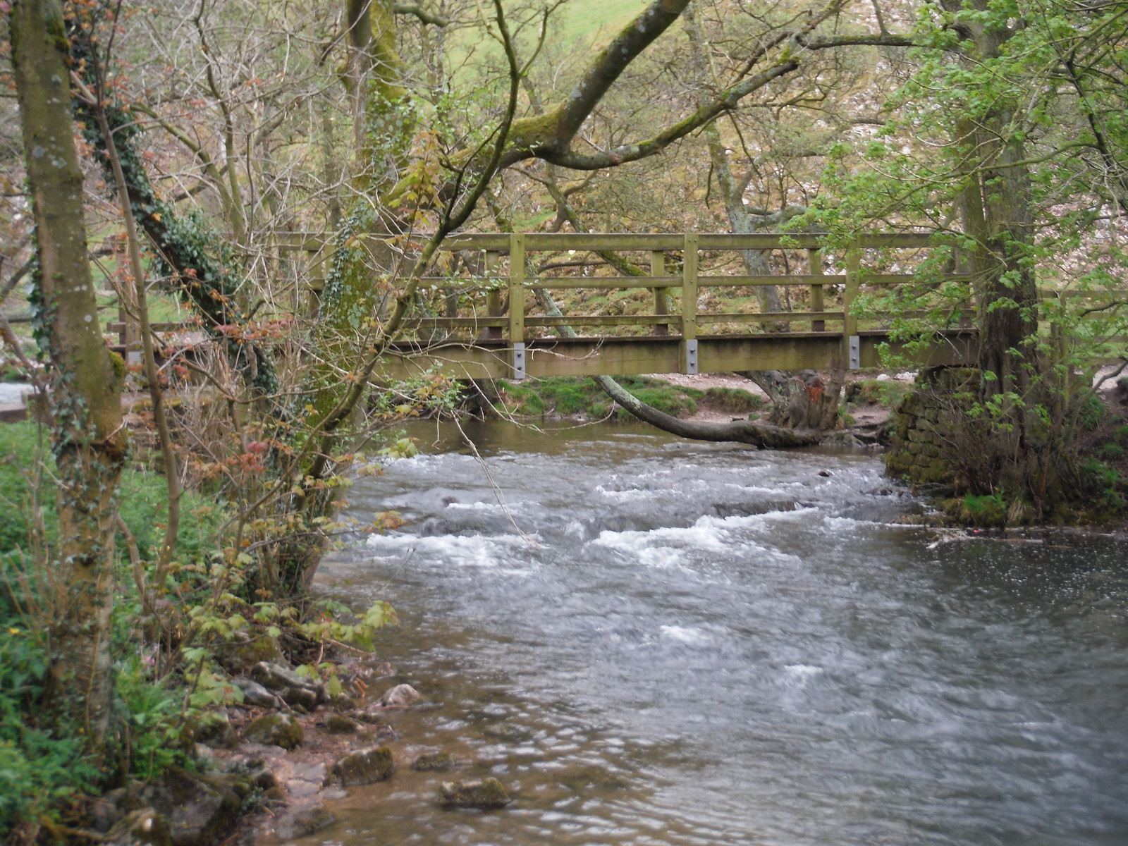 Footbridge over the Dove at Thorpe Cloud SWC Walk 326 - Dovedale (Ashbourne Circular)