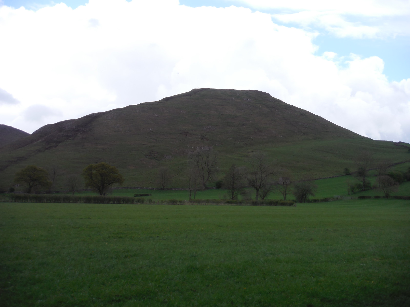 Thorpe Cloud from field beside Dove SWC Walk 326 - Dovedale (Ashbourne Circular)