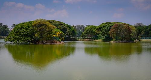bangalore karnataka india lalbagh lake botanical garden bengaluru indian gardens lab bagh park parc jarden botanischer garten jardens jardin jardins tree trees water pond