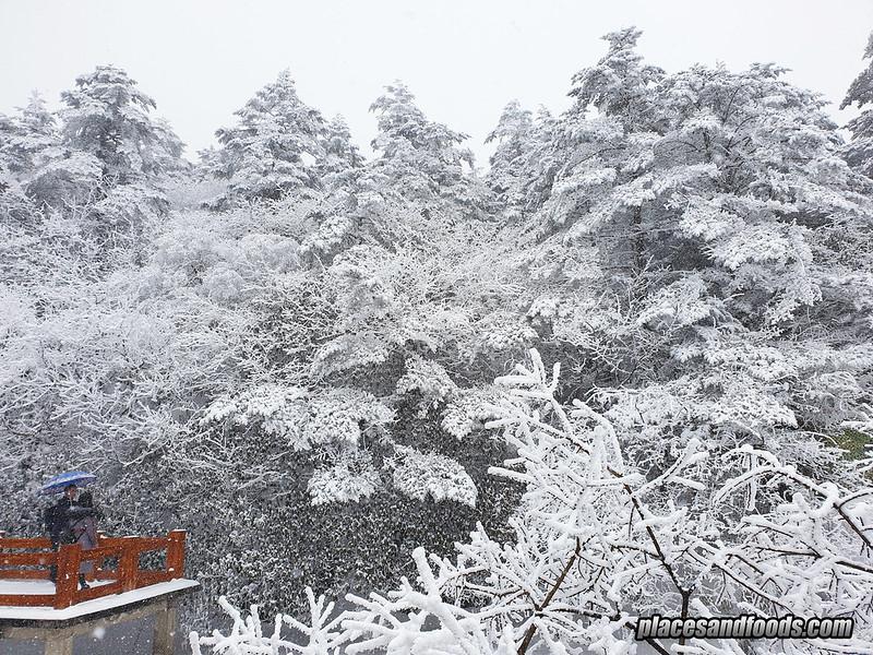 china jinding snow