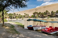 Sand-boarding in  Huacachina, Peru