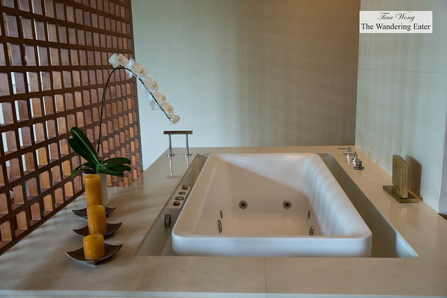 Deluxe spa treatment room for two people