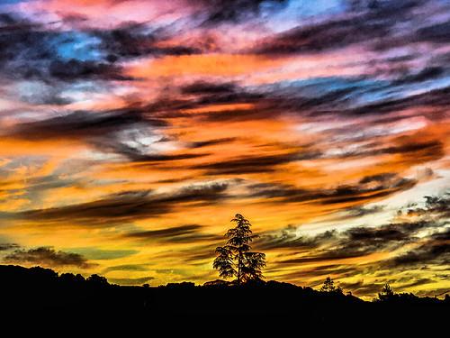 rohnertpark california usa sunrise stevenpmoreno goldensky earlymorning stevenmorenospix2019 sonomacounty phonephotography