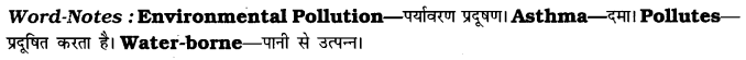 CBSE Class 7 English Paragraph Writing Based on Verbal Input 8