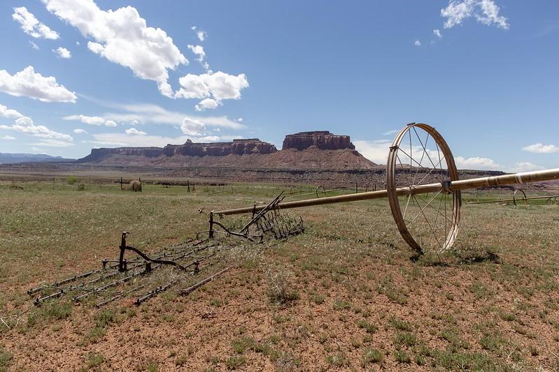 Landwirtschaft in der Wüste.