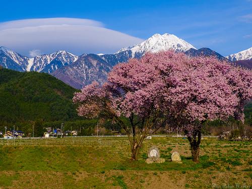 Landscape of Horigane Azumino