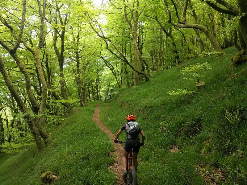 Mountain Bike - disfrutando de la naturaleza
