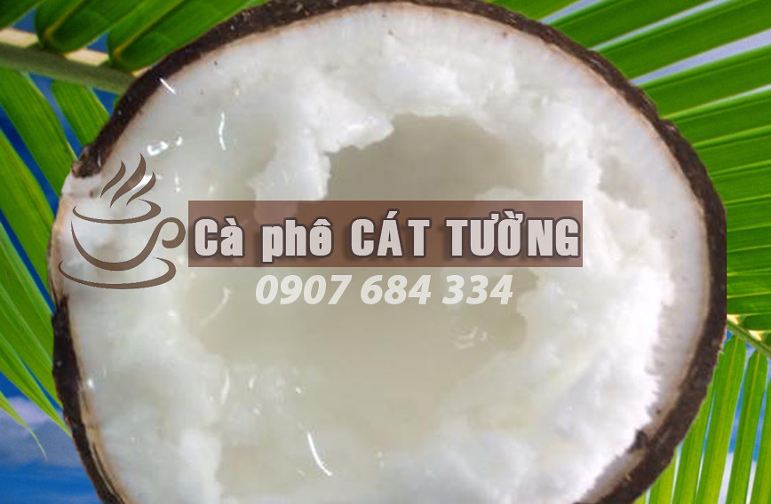 dừa-sáp-TP.-Cần-Thơ-0915326788