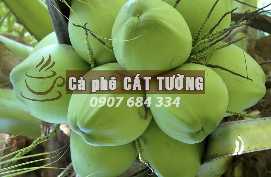 dừa-dứa-TP.-Cần-Thơ-0915326788