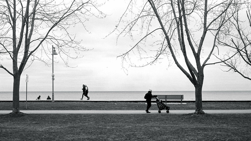 Saturday Morning Along the Boardwalk and Martin Goodman Trail