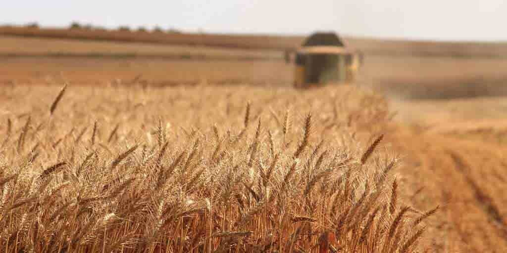 protéger-les-cultures-sans-pesticides