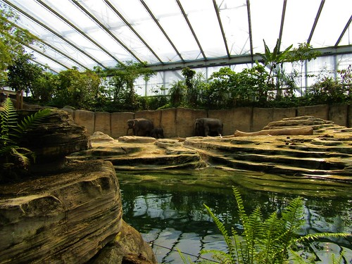 Wildlands Adventure Zoo in Emmen