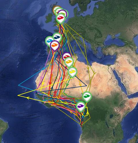 cuckoo map