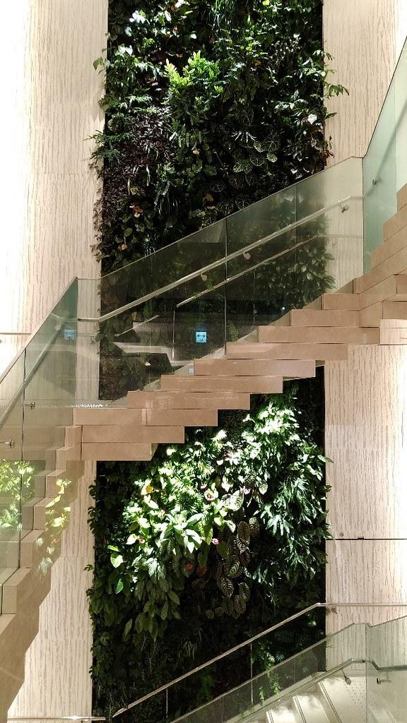 樓梯間的植生牆。