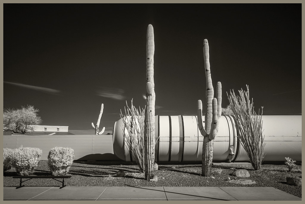 Pima A&S IR #46 2019; Shuttle Solid Rocket Booster & Saguaros