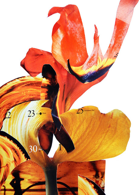 Flame Tulips combined into fire dancers using magazine collage