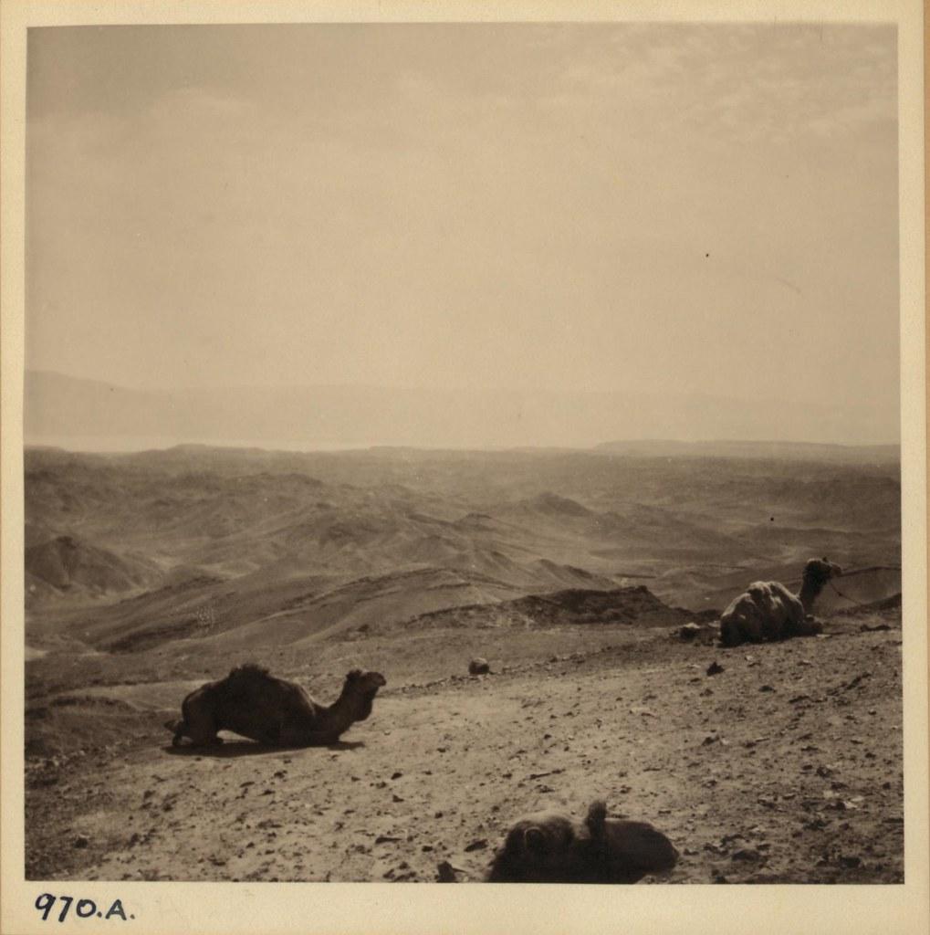 970. 29 февраля. Вид на Трансиорданию