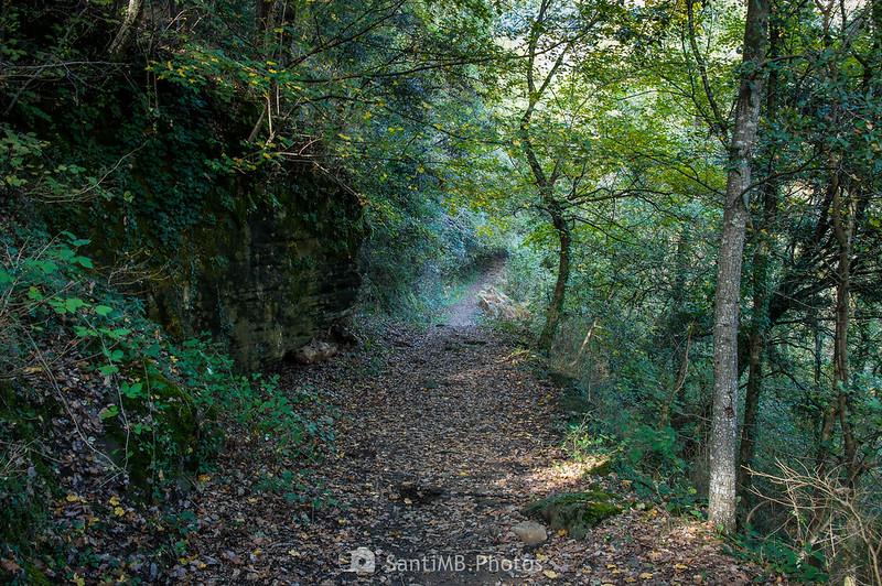 Camino al Salt del Roure junto a su paso por la Bauma de Sant Mateu