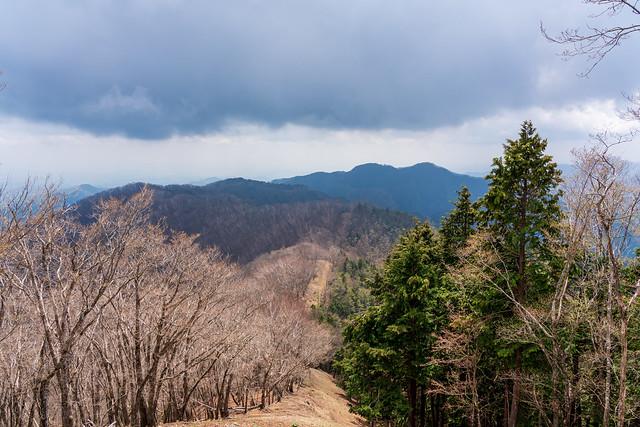 日向沢ノ峰、川苔山@蕎麦粒山