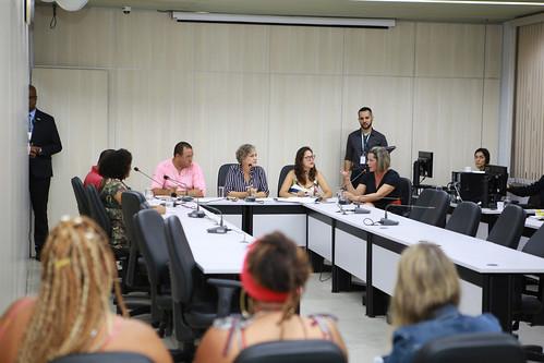 1ª Reunião Ordinária - Comissão de Mulheres