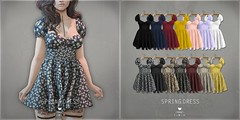 Spring.Dress - Collabor88