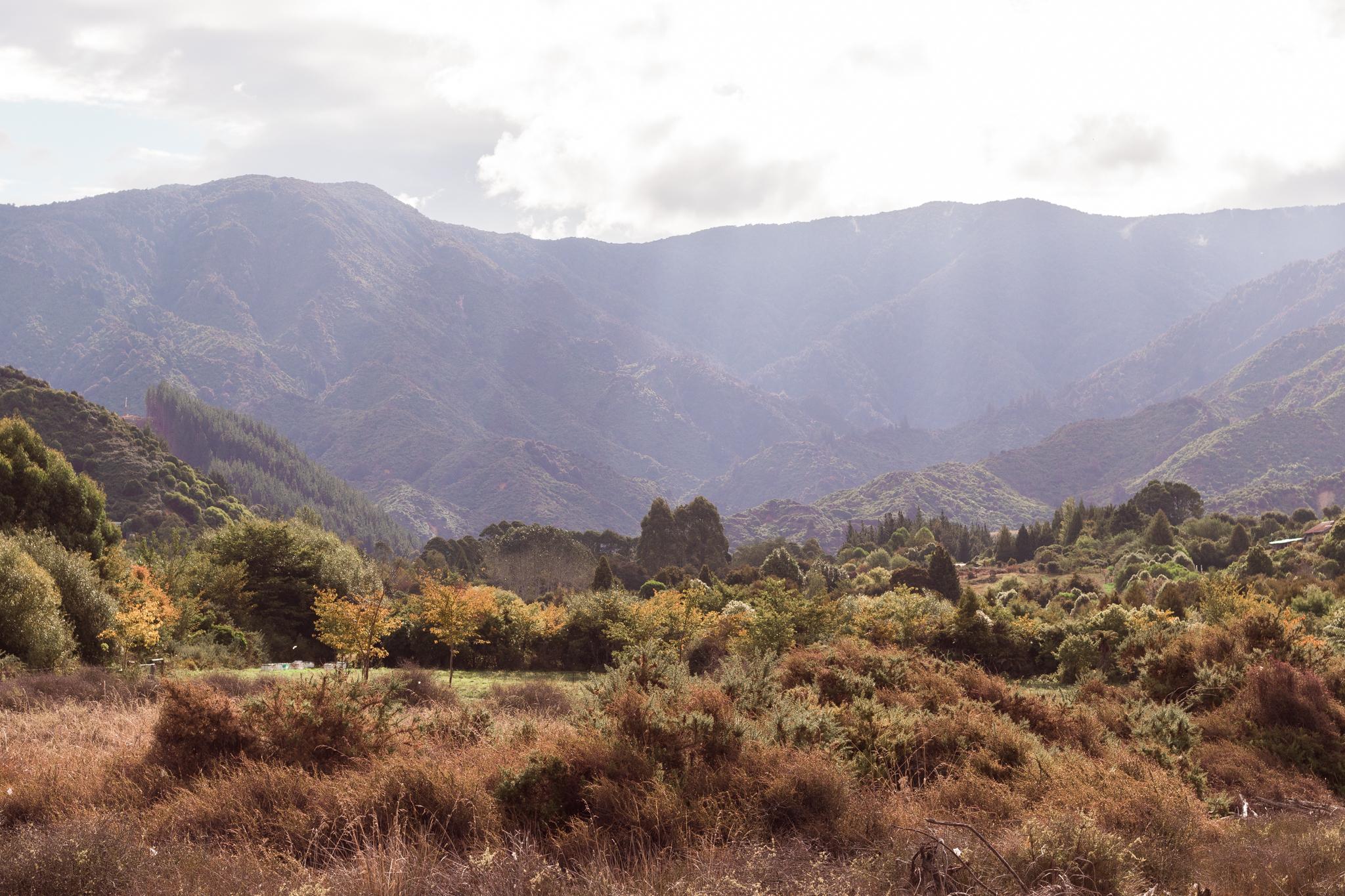 Abel Tasman national park-57