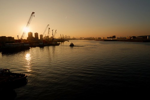 sunset royalvictoriadock docklands dock fujifilm fujilovers fujifilmxt100 timeoutlondon london londonlife londoncityairport eastlondon pontoondock universityofeastlondon boats tugboat newham canarywharf royalalbertdock sirsteveredgrave