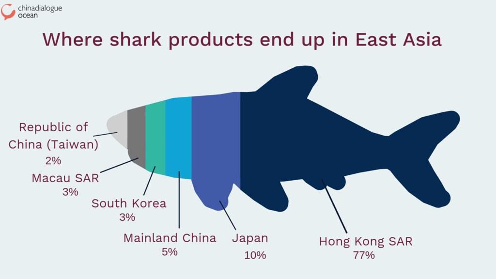 各國鯊魚產品的進口比例
