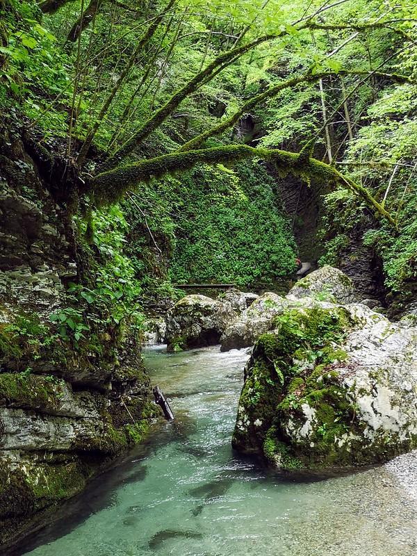 River Kozjak Slovenia