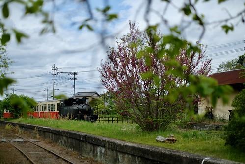 小湊鉄道をめぐる小旅行 6