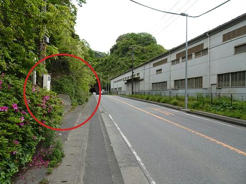 横浜自然観察の森 入り口
